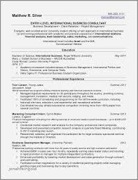 Resumes Samples For College Students Summer Jobs Best Of Examples