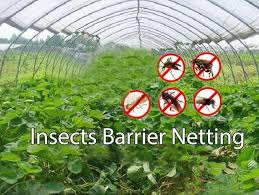 agfabric standard insect screen garden netting against bugs birds squirrels for