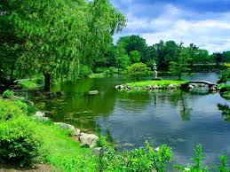 Small Picture Green Garden Wallpapers Group 74