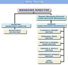 Describe An Organizational Chart Hugh Fox Iii