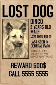 Missing Dog Poster Customizable Design Templates For Lost Animal