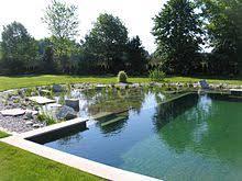 Natural pool Wikipedia