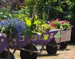 The Victorian Kitchen Garden Floral Guernseys School Wheelbarrows Competition At Saumarez Park