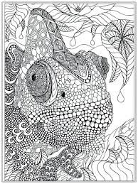 Advanced Coloring Pages For Older Kids Colorings Pinterest ...