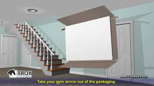 gym mirrors for your home business