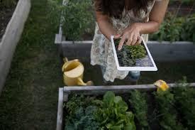 best gardening apps smartplant