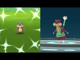 We Caught Shiny Patrat Pokemon Go Shiny Patrat Evolves Into Shiny Watchog