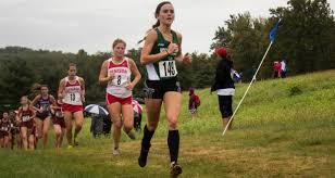 the mount vernon nazarene university women s cross country team finished 14th out of 26 teams at the naia great lakes challenge hosted by aquinas college