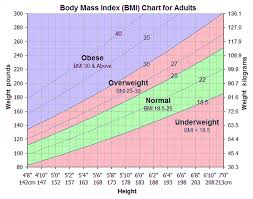 12 Bmi Chart Metric Business Letter