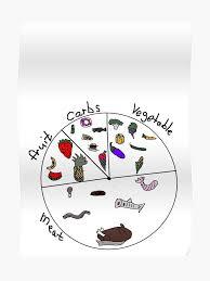 Keto Pie Chart Poster