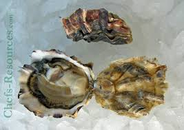 Eld Inlet Oyster Chefs Resources
