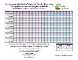 Free Marquette Method 20 Day Breastfeeding Protocol Chart