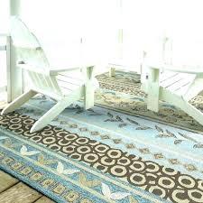 how to clean an indoor outdoor rug clean indoor outdoor rug how to an carpet mold