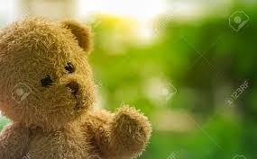 lovely teddy bear doll in garden under sun light using background or wallpaper copy e