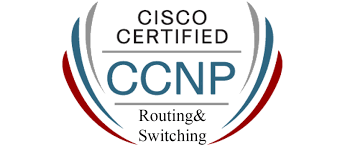 routing and switching best institute for ccnp routing and switching training course india