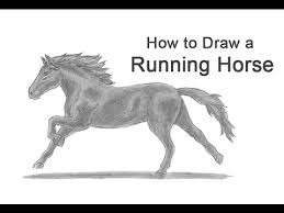 running horse drawing. Fine Drawing How To Draw A Horse Running On Drawing W