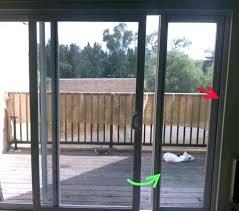 doggy door sliding glass dog insert home depot doggie instructions
