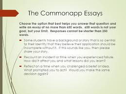 how to prepare a great college essay ppt  the commonapp essays