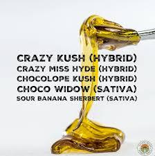crazy kush hybrid crazy miss hyde hybrid chocolope kush hybrid choco widow sativa sour banana sherbert sativa