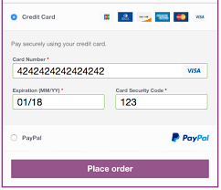 Paypal Powered By Braintree Woocommerce Docs