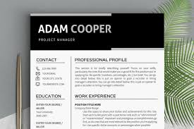Template Professional Resume Inspiration Resume Template Instant Download Clean Resume Templates Professional