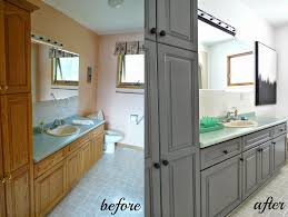 Kitchen Cabinets In Bathroom Cabinet Refinishing 101 Latex Paint Vs Stain Vs Rust Oleum