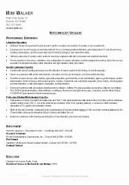 Good Resumes Examples Gorgeous Good Resumes Examples A Good Resume Template Resume Builder