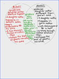 Comparing Mitosis And Meiosis Venn Diagram Mitosis And Meiosis Venn Diagram Education Venn Mitosis And Meiosis