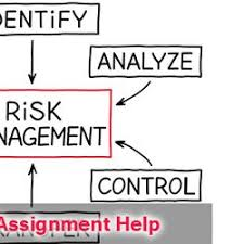 management accounting assignment help pearltrees risk management assignment help in now