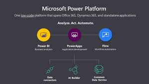 What Is The Microsoft Power Platform Formus Professional