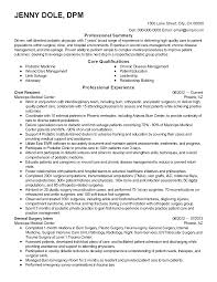 Engineering Consultant Resume Resume For Study