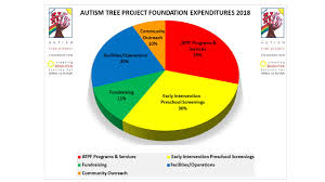 Charity Pie Charts The Autism Tree Project Accepts Charitable Donations
