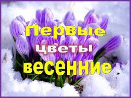 Первые <b>весенние цветы</b> Самые ранние <b>цветы</b> . - YouTube