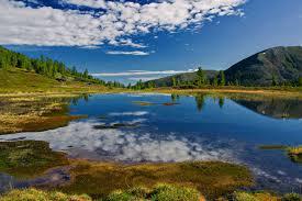 Заповедники Байкала Байкальские заповедники и заповедные зоны  Навряд ли какие то другие заповедники Байкала смогут предложить столь обширный список флоры и фауны к просмотру как Баргузинский заповедник