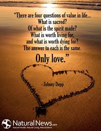 Value Of Life Quotes Fascinating Value Of Life Quotes Cool There Are Four Questions Of Value In Life