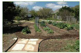 planning a garden how to plan a