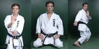 Hirokazu Kanazawa is a world-renowned Japanese master of Shotokan karate  and Chief instructor and President of Shotokan Karate-Do Inte… | Karate,  Kanazawa, Shotokan