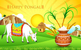 example of pongal festival essay the four days of the pongal festival are known as bhogi surya mattu and kaanum pongal festival essay thai pongal festival essay