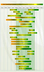 zone 6 vegetable planting calendar describing approximate dates to start vegetable plants indoors and outdoors relative