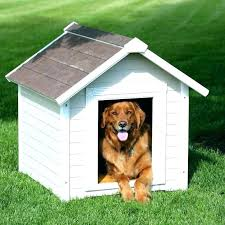 small dog house small dog house houses the best extra large ideas on dogs precision igloo small dog house
