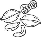nut clipart black and white. nut%20clipart nut clipart black and white e