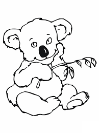 koala coloring pages brothers realistic ballet free printable bear wonderful