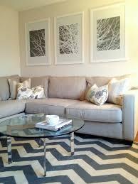decor chevron rugs great design simplynavy