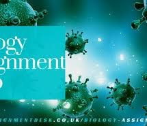 biology images on com biology biology assignment help