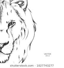 lion drawing. Delighful Drawing Portrait Of A Lion Can Be Used For Printing On Tshirts Flyers And Lion Drawing I