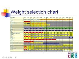 Car Tire Balancing Beads Chart 18 New Balancing Beads Chart