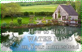 how to build a water pond on your homestead the homestead survival