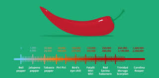 Scorpion Pepper Scoville Chart The Spiciest Chilies In The World The Fact Site