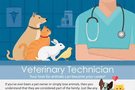Image result for photos of Veterinary technicians