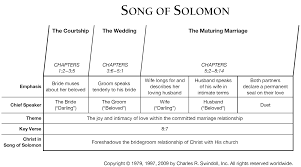 song of solomon essays essay on song of solomon by toni morrison  song of solomon commentary precept austin adapted from